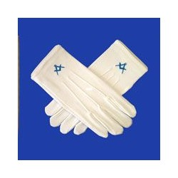 Gloves - Blur Logo