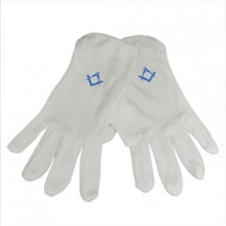 Gloves - Blur Logo [one size fits all]